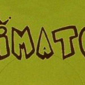 Image for 'Primate C'