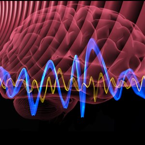Image for 'Binaural Beat Therapy'