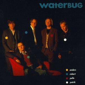 Image for 'Waterbug'
