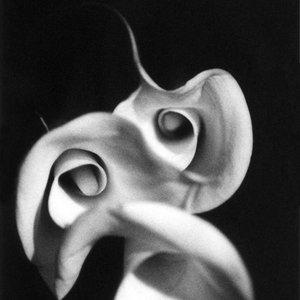 Bild für 'Telepopmusik - Deborah Anderson'