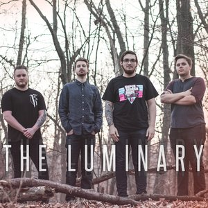 Image for 'The Luminary'