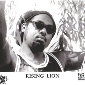 Image for 'Rising Lion'