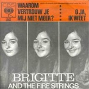 Image for 'Brigitte and the Fire Strings'