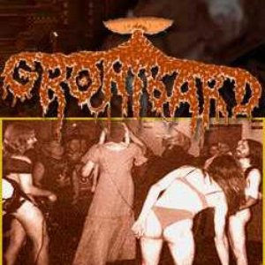 Image for 'Gronibard'