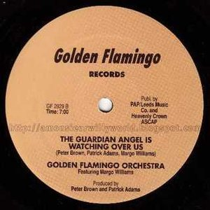 Image for 'Golden Flamingo Orchestra'