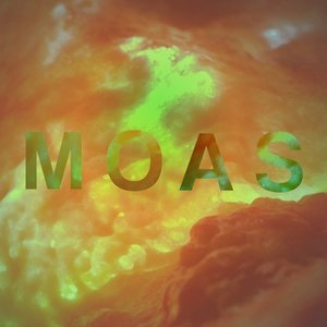 Image for 'The Moas'
