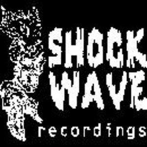 Image for 'shockwave tag team'