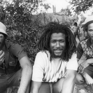 Image for 'The Congos'