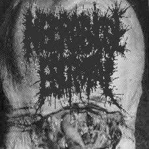 Image for 'Necrobiose Escrotal'