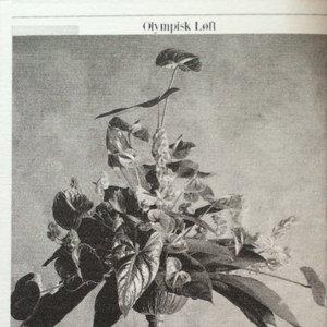Image for 'Olympisk Løft'