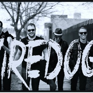 Image for 'Wiredogs'