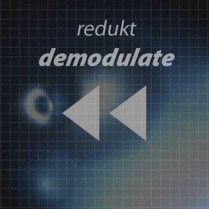 Image for 'Redukt'