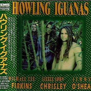 Image for 'Howling Iguanas'