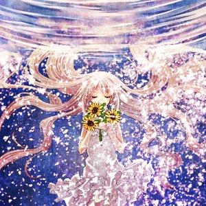 Image for 'Ano Hana'
