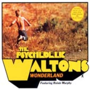 Image for 'The Psychedelic Waltons feat. Roisin Murphy'