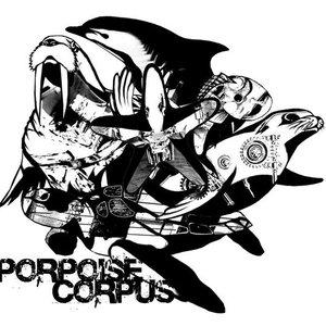 Bild för 'Porpoise Corpus'