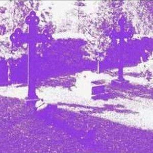 Image for 'Il Giardino Violetto'