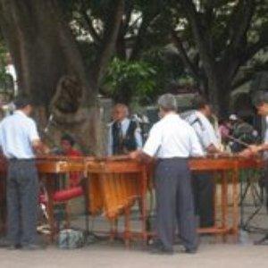 Image for 'Marimba del Estado de Oaxaca'