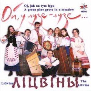 Image for 'Лiцвiны'