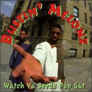 Image for 'Bustin' Melonz'
