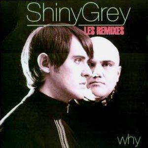Image pour 'Shiny Grey'
