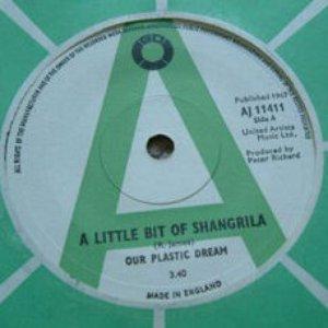 Imagen de 'Our Plastic Dream'