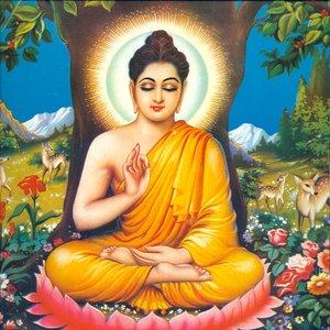 Image for 'Buddhattitude'
