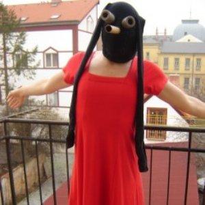 Imagem de 'Čáp'