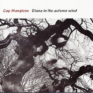 Image for 'Gap Mangione'