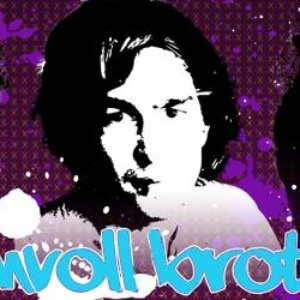 Image for 'Bummvoll Brothers'