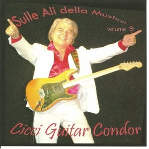 Image pour 'Cicci Guitar Condor'