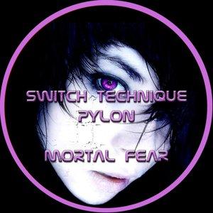 Bild für 'Pylon & Switch Technique'
