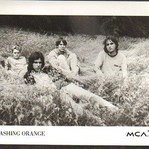 Image for 'Smashing Orange'