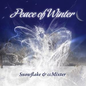 Image for 'Snowflake & ccMixter'