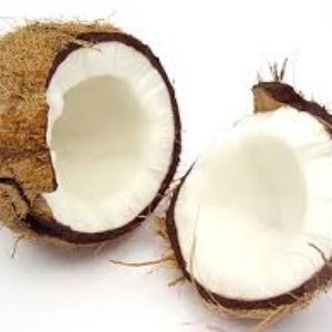 Image for 'The Coconut Song'