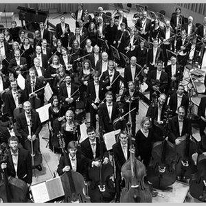 Image for 'Malmö Symphony Orchestra'