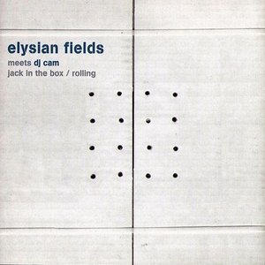 Image for 'Elysian Fields Meets DJ Cam'
