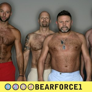 Image for 'BearForce 1'