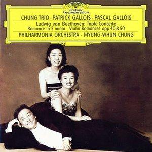 Image for 'Patrick Gallois, Pascal Gallois, Myung-Whun Chung - Philharmonia Orchestra'