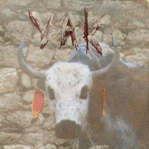 Bild för 'Yak Snot'