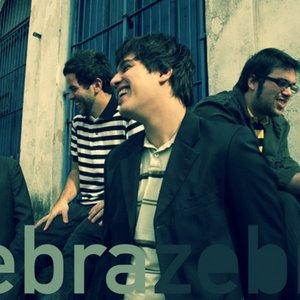 Bild för 'Zebra Zebra'