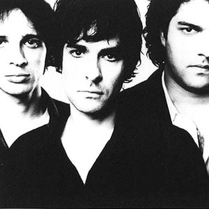 Bild för 'The Jon Spencer Blues Explosion'