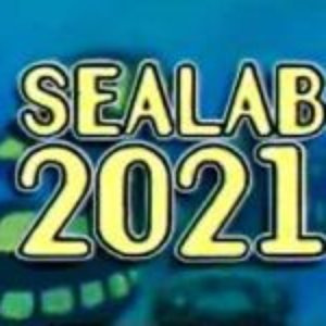 Image for 'sealab 2021'