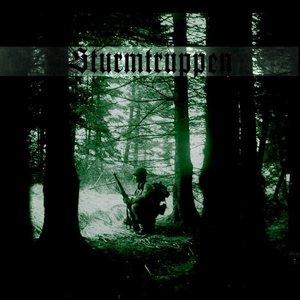 Image for 'Sturmtruppen'