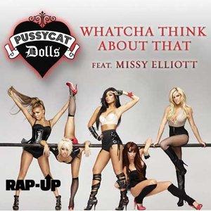 Image for 'Pussycat Dolls Feat. Missy Elliott'