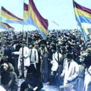 Image for 'Corul Barbatesc din Finteusul Mare'