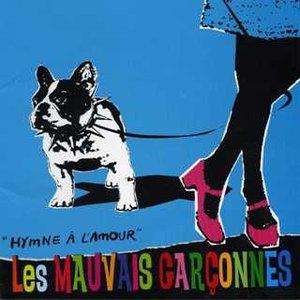 Image for 'Les MAUVAIS GARCONNES'