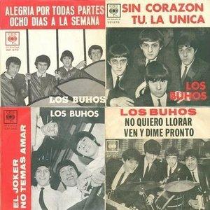 Image for 'los buhos'