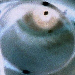 Image for 'Doppler 20:20'