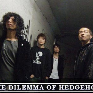 Image for 'the dilemma of hedgehog'